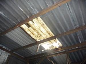 Sturz Dach amh